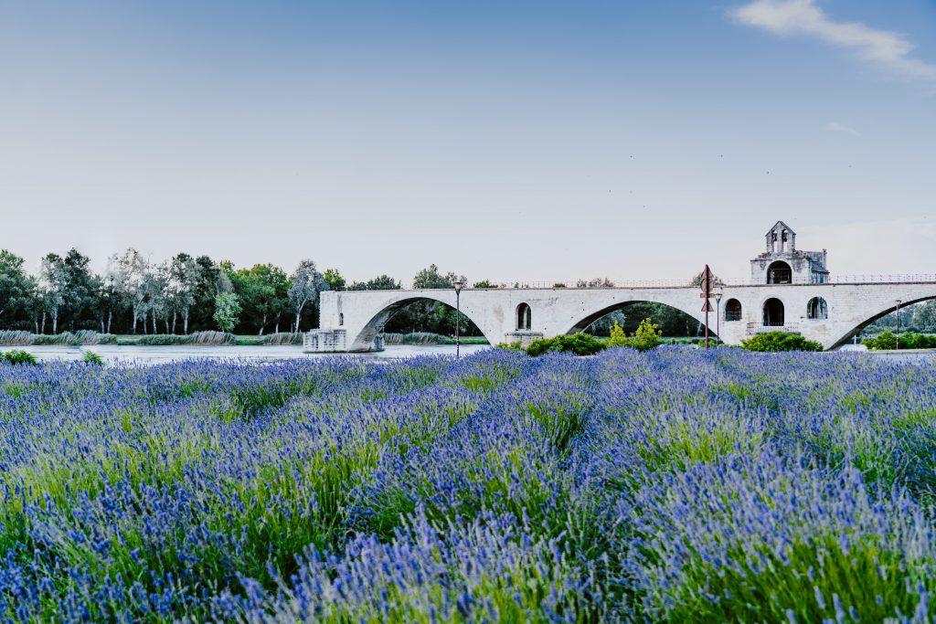 Visite Avignon que faire que voir TOP