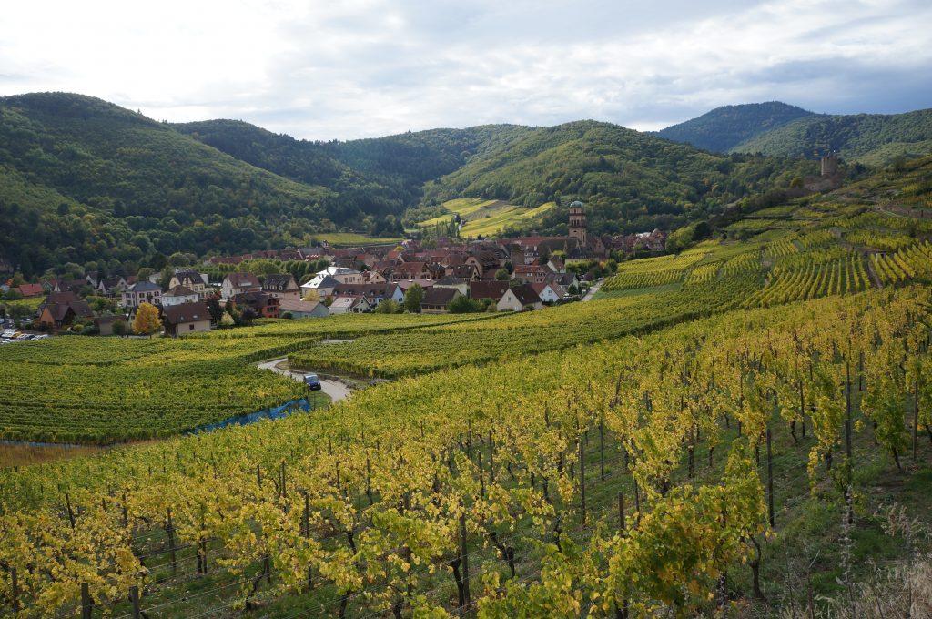 route des vins alsace en voiture itineraire